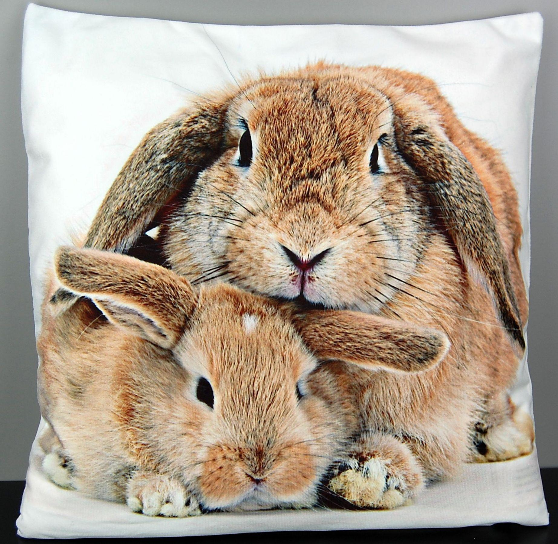 kissenh lle 40x40 cm ostern hase osterkissen sofakissen kuschelkissen soft touch ebay. Black Bedroom Furniture Sets. Home Design Ideas