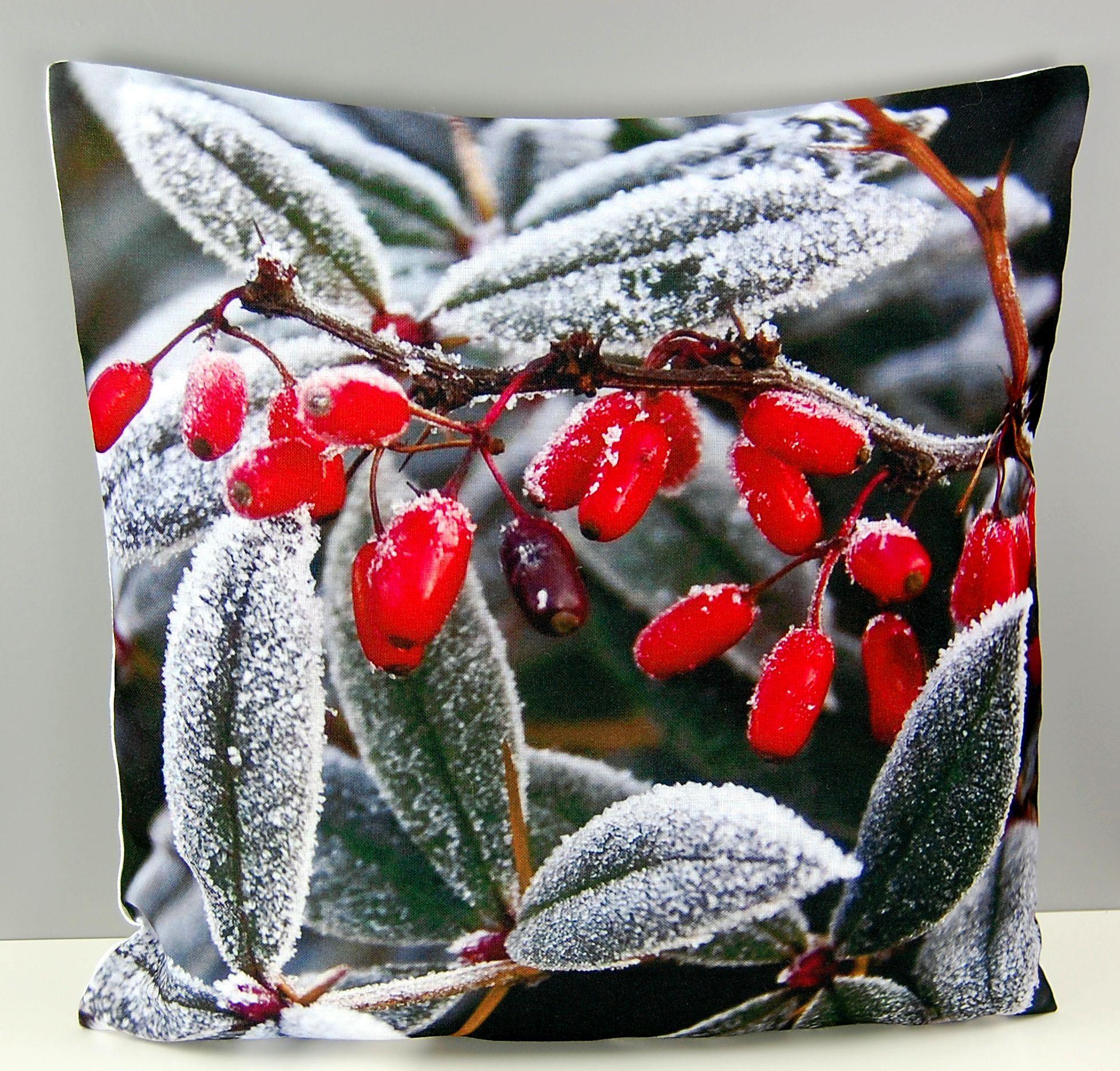 Kissenh lle 40 cm x 40 cm weihnachten winter hagebutten for Bildmotive wohnzimmer